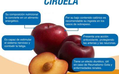 Un fruto altamente recomendable por su composición nutricional es la CIRUELA